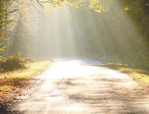 Wandelen door de Geest?