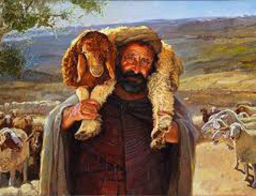 Promiseland Middenbouw – Het lied van de herder
